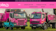 Baileys Skip Hire and Recycling Ltd
